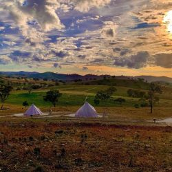 Golden sunset with bell tents