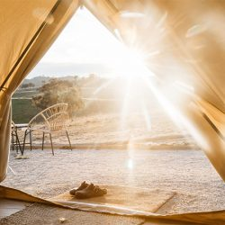 Looking out of bell tent at sunrise