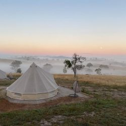 Early morning fog and bell tent